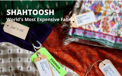 The Story of Shahtoosh: World's Most Expensive Fabric