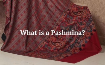 What is a Pashmina? A Complete Overview