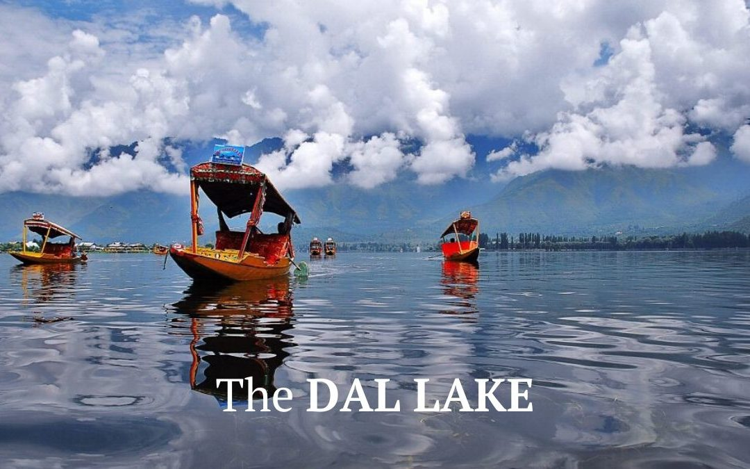 Dal Lake: The Heart of Srinagar