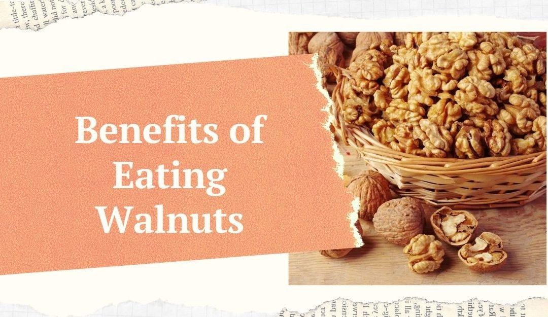 Top 15 Benefits of Walnuts {Scientific Research}