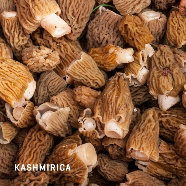 Kashmiri Gucchi Muskhrooms
