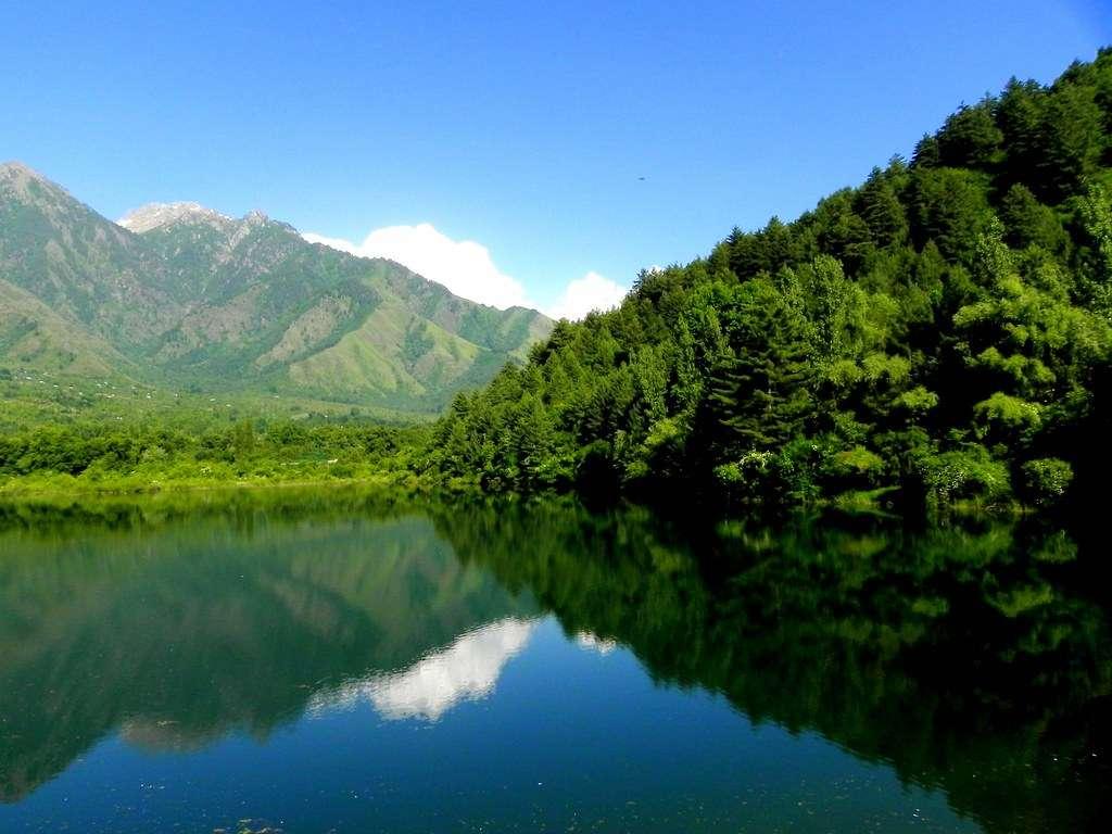 Dachigam Waters
