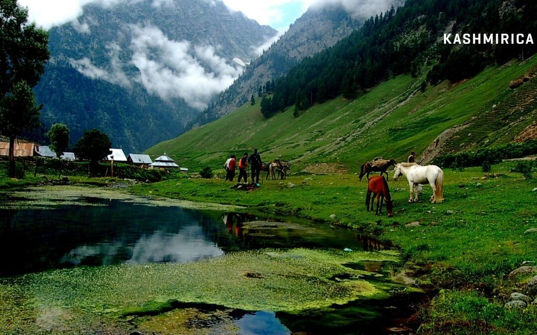 A-Z Guide to Visiting Sonamarg {Happy Travel}