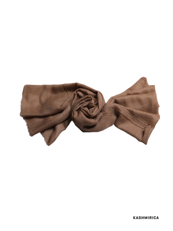 pashmina brown colour stole with white background