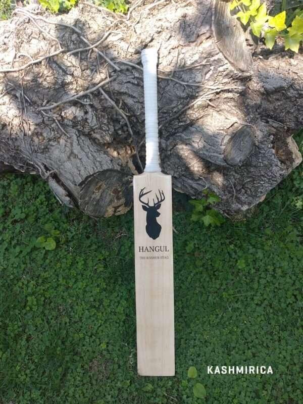 Kashmir Willow Bat - Front