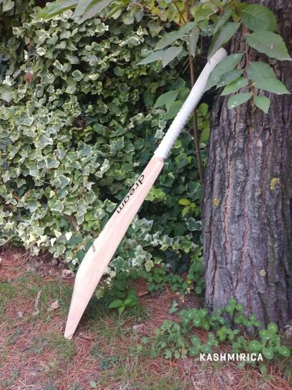 Kashmir Willow Bat - Side